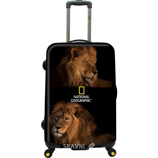 Фото National Geographic Lion N021HA.71;09